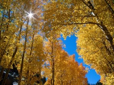 autumn_colors.jpg