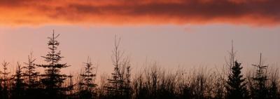 kenai_sunset.jpg