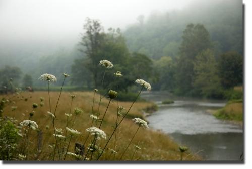 watauga_river.jpg