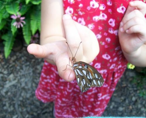 butterfly_girl.jpg